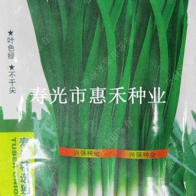 供应独根红韭菜—韭菜种子