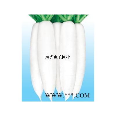 供应寒白玉龙-杂交白萝卜种子
