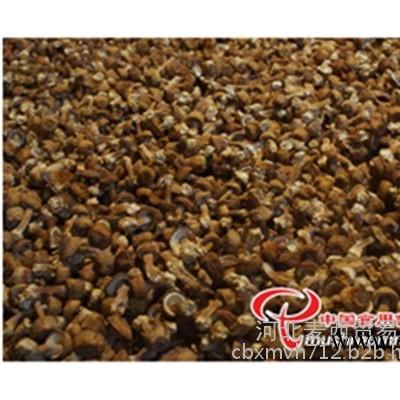 金针菇包菇片价格、包菇片、河北麦西贸易有限公司