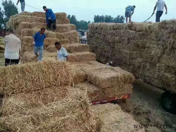 杜宇2000 谷王秸秆捡拾打捆方捆机  对小麦秸秆 牧草 稻草玉米秸秆全自动打捆 **