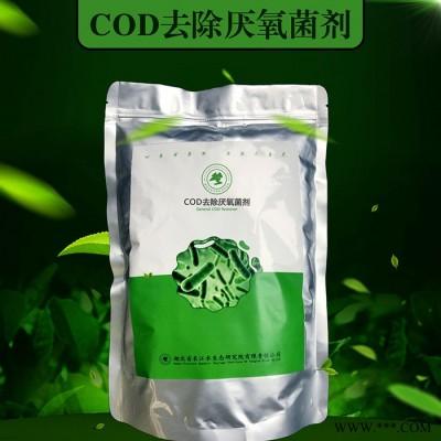 COD去除厌氧菌剂/微生物菌种/工业污水处理微生物菌剂 长江水生态研究院