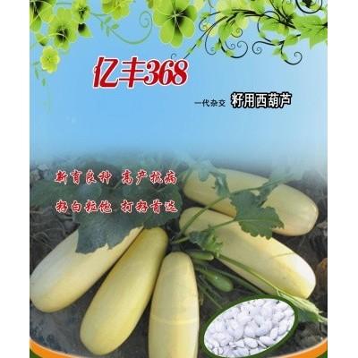 供应亿丰368—西葫芦种子