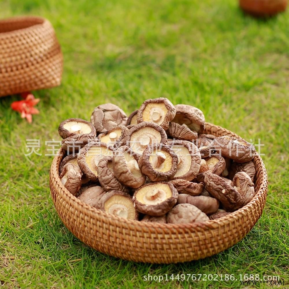 供应剪脚优质脱水干香菇产地直供厂家批发