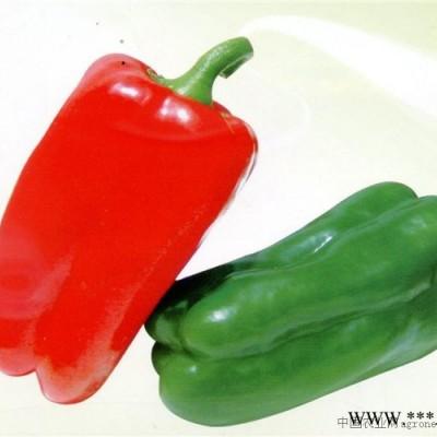 供应安格斯-甜椒种子