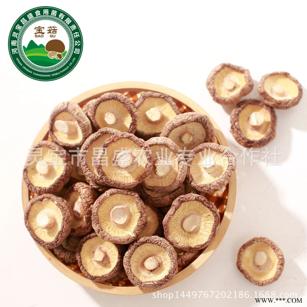 河南灵宝昌盛干香菇 干香菇肉厚瓷密