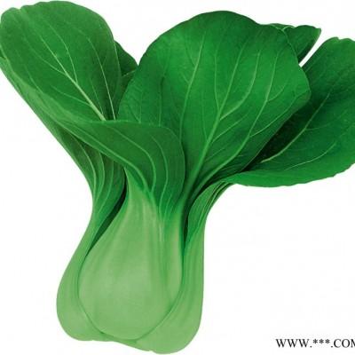 供应美华冠—青梗菜种子