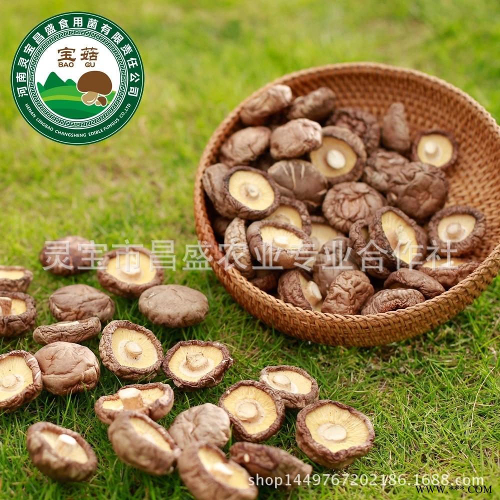 灵宝昌盛优质干香菇,干制香菇散货