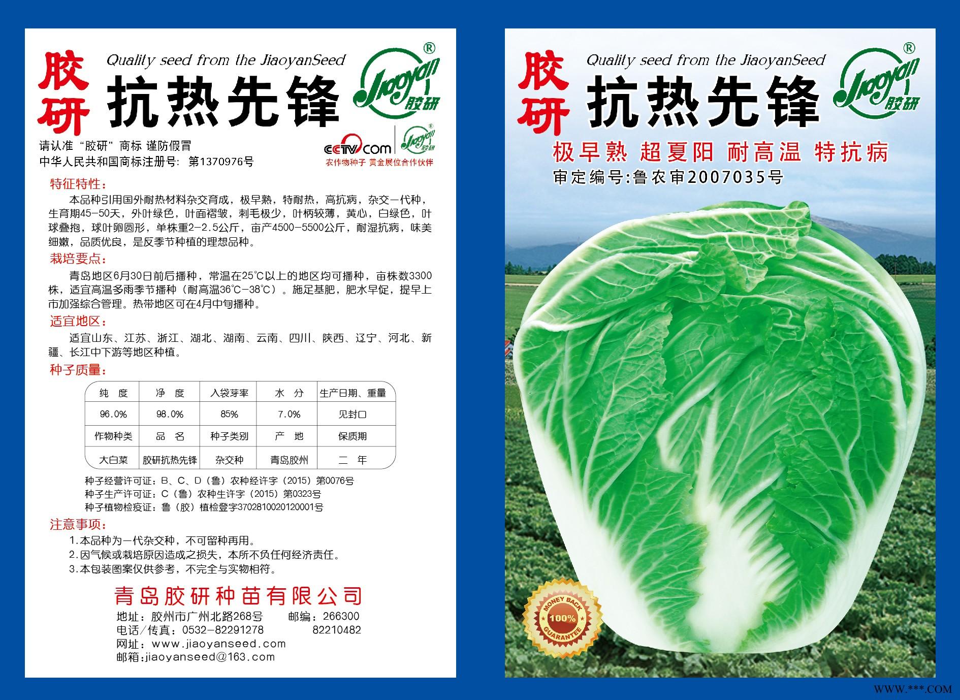 供应胶研抗热先锋-白菜种子