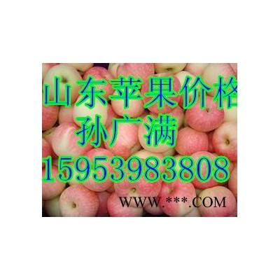 供应山东苹果
