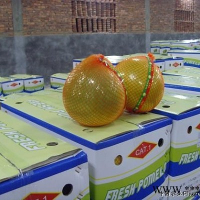 供应琯溪蜜柚加工