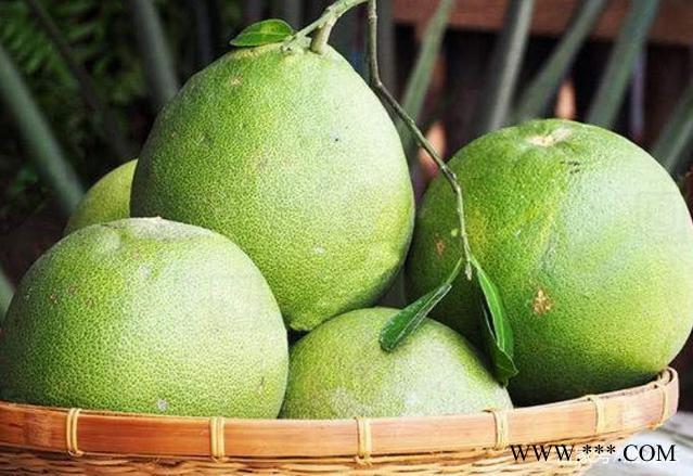供应青甜柚青色的柚子