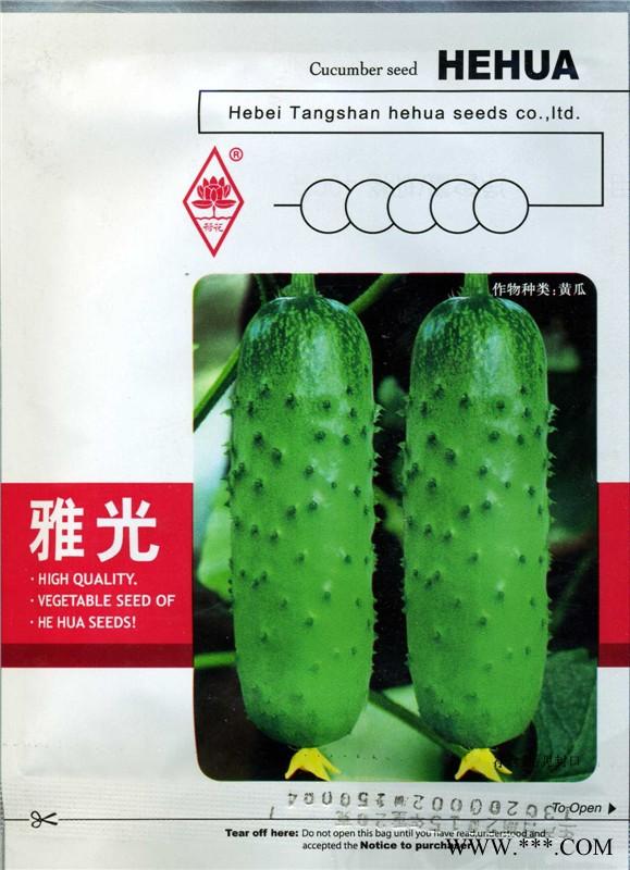 供应雅光-黄瓜种子