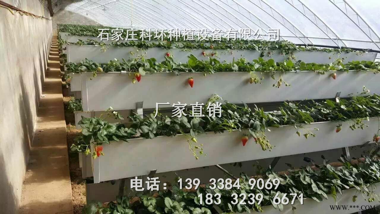 供应草莓种植槽