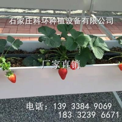 供应各种种植槽