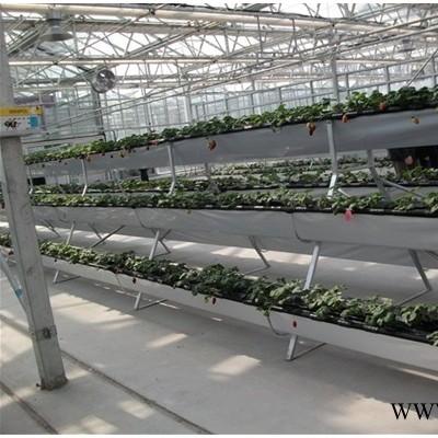 供应立体式无土栽培种植槽