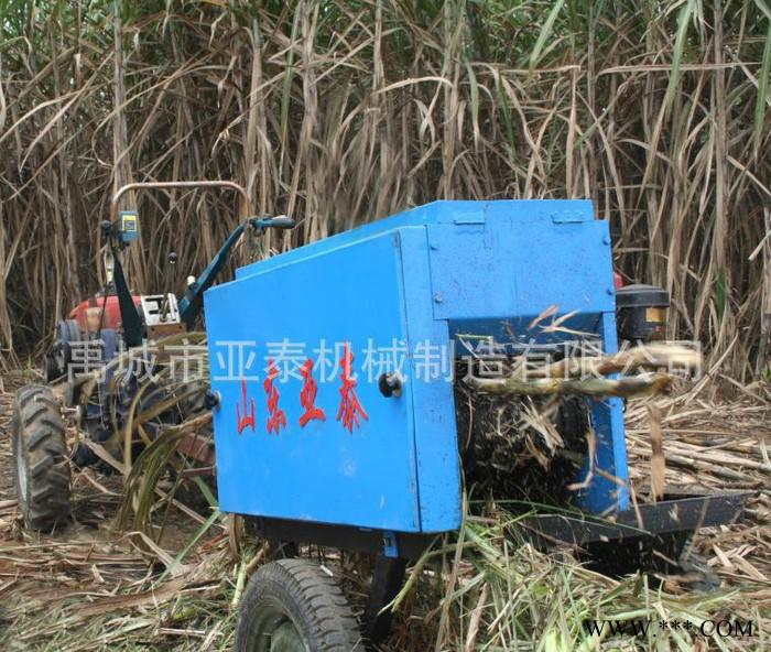 甘蔗剥叶机找哪里 山东禹城亚泰机械 **剥叶机 小型农机