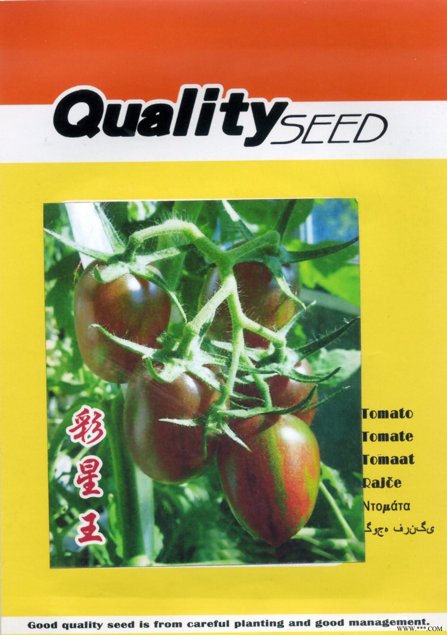 供应彩星王-番茄种子