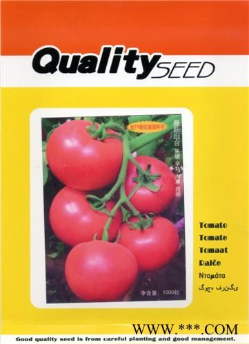 供应粉迪F1-番茄种子