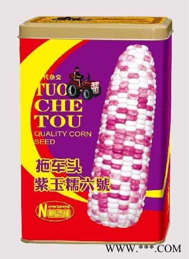 供应紫玉糯六号罐——双色大棒玉米系列