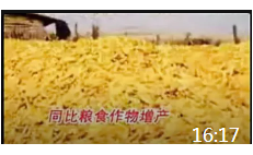 16:17 亚环生物肥绿色农业希望