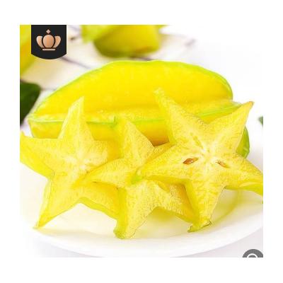 台湾红龙杨桃 杨桃新鲜水果现摘现发 福建漳州下河新鲜甜杨桃