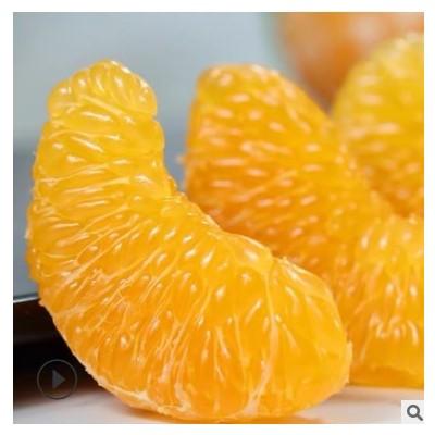 耙耙柑春见 四川眉山东坡春见 耙耙柑 新鲜水果 春见 耙耙柑 丑橘