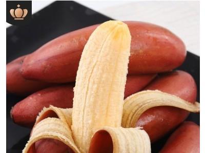 福建红香蕉5斤 漳州美人蕉香甜 新鲜水果红美人红皮香蕉当季香蕉