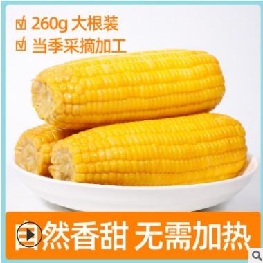 水果甜玉米棒广西厂家直供代加工260g甜玉米棒即食真空装营养代餐