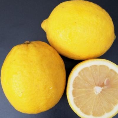 【柠檬】四川安岳尤力克黄柠檬新鲜多汁果园直供