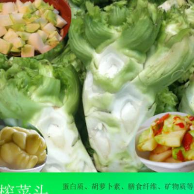5斤包邮 新鲜榨菜头现挖生榨菜头菱角羊角芥菜疙瘩菜乌江涪陵榨菜