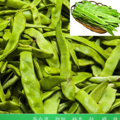 5斤包邮 新鲜扁豆现摘四季豆当季蔬菜时令瓜果 一件代发包售后