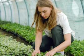 农业科技不只是农业大数据、物联网、AI,还有新农人的培养