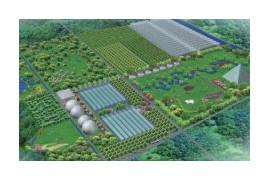 2021年农业将是重头戏!