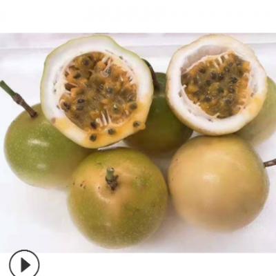黄金百香果 5斤新鲜水果百香果现摘黄色百香果当季广西鸡蛋果代发