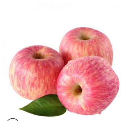 顺丰 山西苹果冰糖心红富士 10斤新鲜水果批发丑苹果红富士苹果