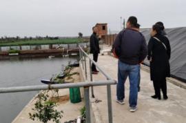 技术中心开展养殖尾水生态治理技术调研