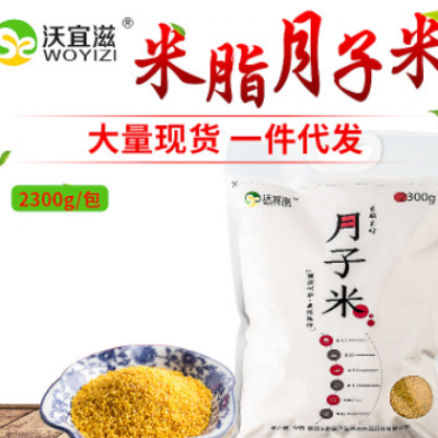 陕北农家月子米 米脂县五谷杂粮宝宝小黄米批发 2300克装小米