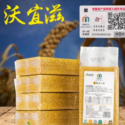 黄小米 陕北杂粮黄小米米砖500g*5袋 五谷杂粮农家小米批发