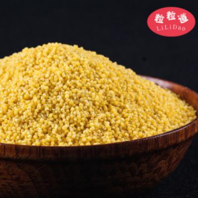 敖汉特产黄金苗小米10斤 敖汉小米 粒粒道厂家批发小黄米5kg