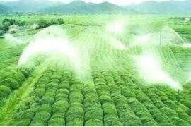 西青区促进设施农业提质增效