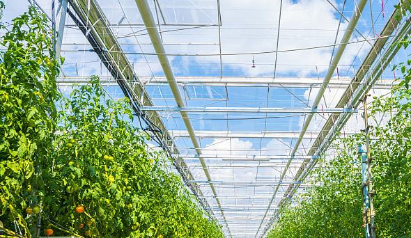 韩城市召开 农业产业化发展工作座谈会