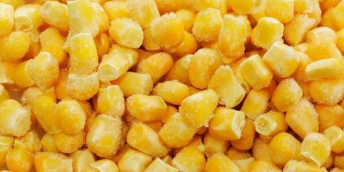 甜玉米和普通玉米有显著的区别,这些栽培技术也要弄清楚