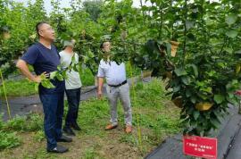 农资农技公司:种植技术现场培训推广会圆满举行