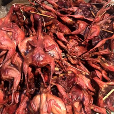 四川特产烟熏鹌鹑1只100g左右 腊肉腊肠批发一件代发