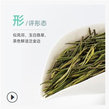 散装安吉高山白茶2021新茶清明茶自采自炒送礼自喝可定制礼盒白茶