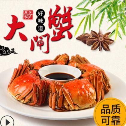 供应鲜活2.5两公蟹10只大闸蟹礼盒装 红膏大闸蟹批发 量大优惠