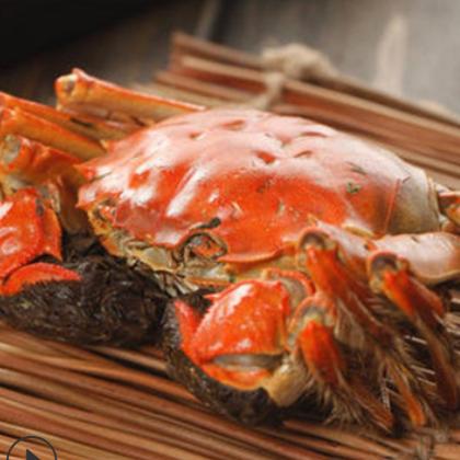 蟹塘直供 大闸蟹鲜活螃蟹现抓现捕六月黄批发兴化河蟹海鲜代发