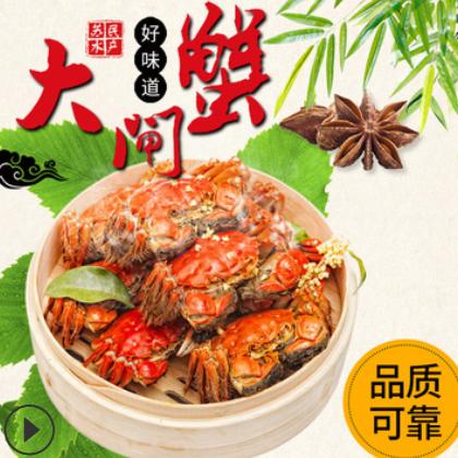 大闸蟹现货2.5两母蟹10只大闸蟹提 螃蟹礼盒 量大优惠