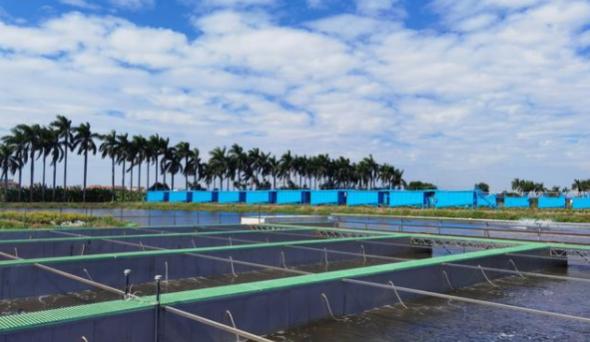 广州发布实施绿色低碳农业生产推荐技术指引