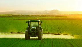 完成率达98%!高要抢抓有利时机,全面推进晚稻种植